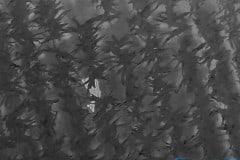 Rotwild im Maisfeld - für die Wärmebildkamera der Drohne kein Problem © spektakulAIR