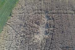 Schaden durch Wildschweine - aus der Perspektive der Drohne © spektakulAIR